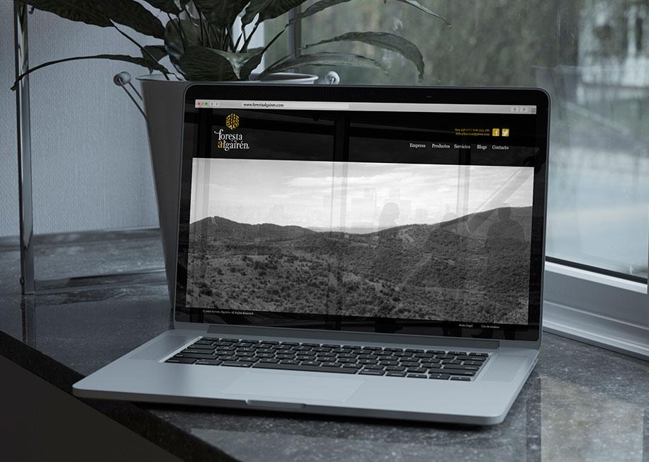 branding diseño grafico logotipo tienda online